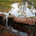 #jesień #woda #jezioro #staw #mur #ruiny