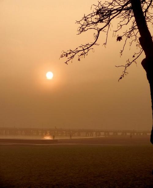 Wariacje z molem (w tle) #molo #Sopot #morze #słońce