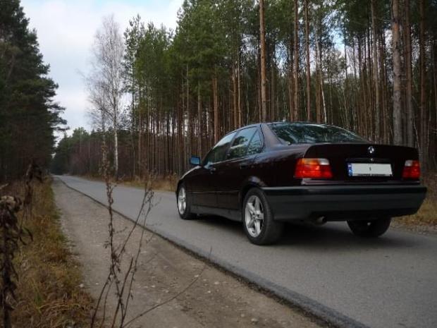 http://images68.fotosik.pl/396/dad387ce16ce5c43gen.jpg