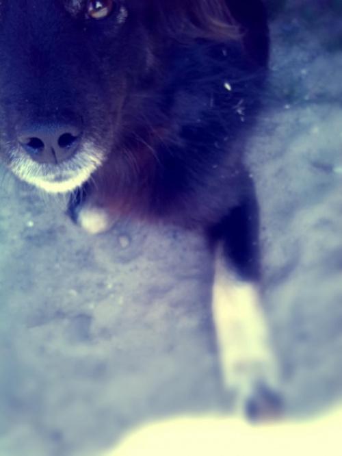 Tosia ;))