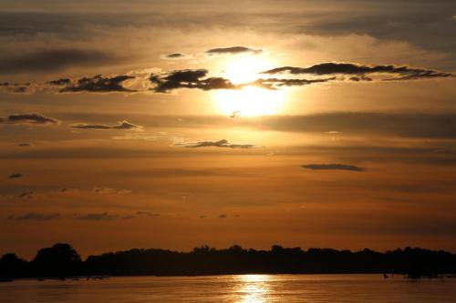 http://images68.fotosik.pl/655/af09568da99e5437med.jpg