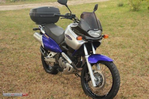 XF650, Freewind