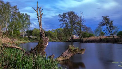 Rzeka ''Gwda'' #d3100 #Gwda #Nikon #Piła #Polska #Rzeka #Wielkopolska